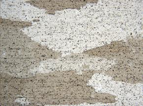 Metallographic micrograph of 7075 aluminum alloy