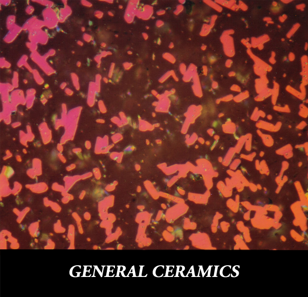 Metallographic specimen preparation for general ceramics such as silicon carbide, alumina, mullite
