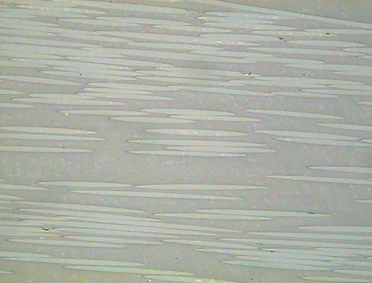 Metallographic micrograph of glass filled polymer composites
