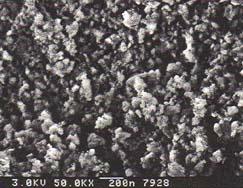 Metallographic Polycrystalline alumina
