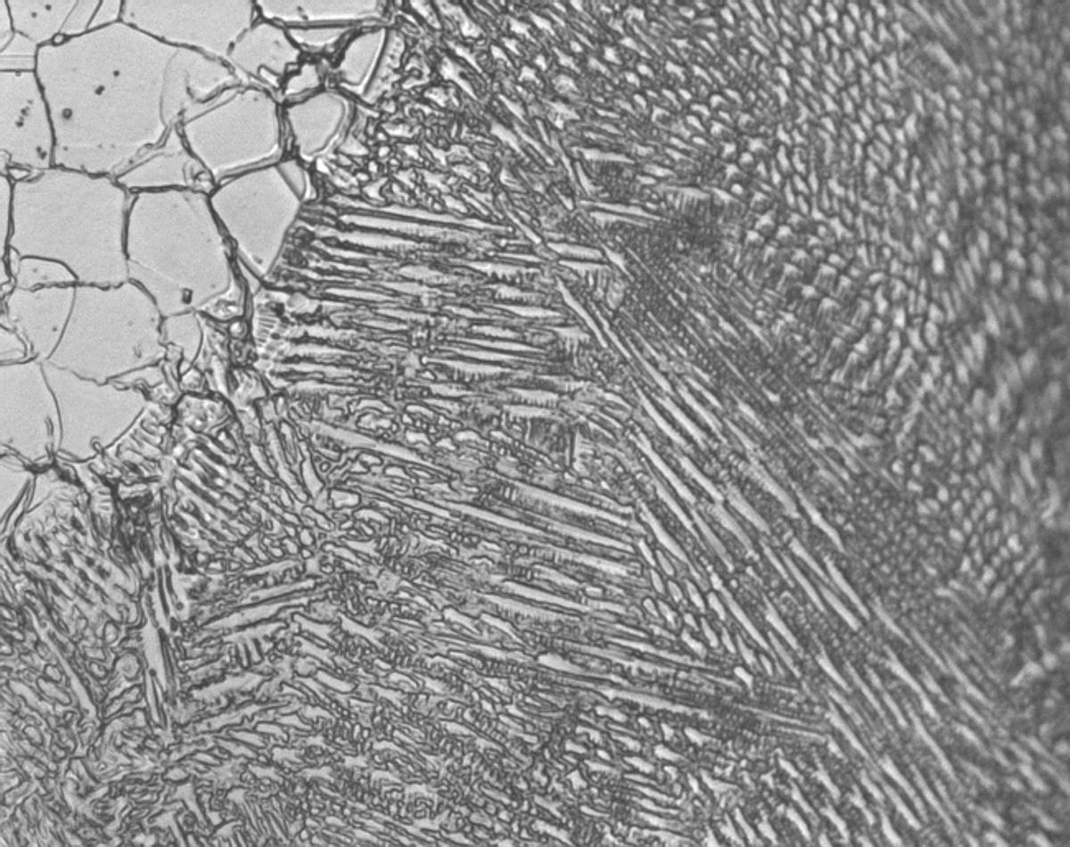Metallographic micrograph of Inconnel